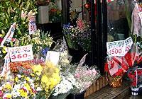 生花 銀閣寺 フローラヤマシタ